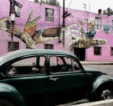 Chasing Beetles, Mexico City