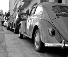 Athens, Chasing beetles