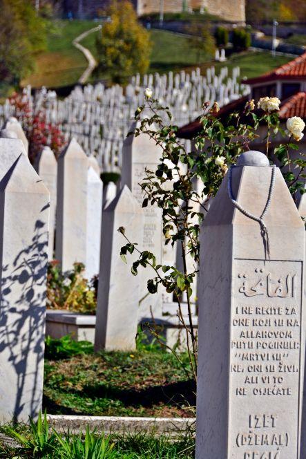 Cemetery, Sarajevo